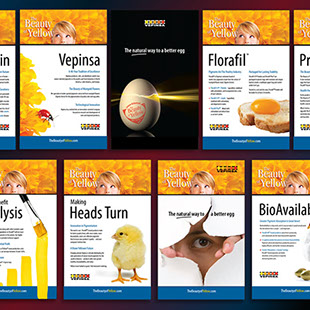 The Beauty of Yellow - marketing collateral